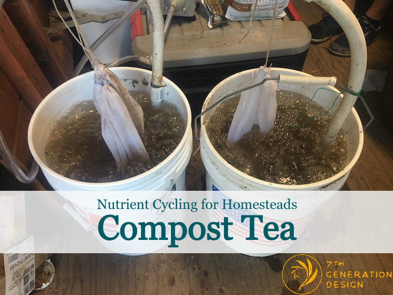 7GD compost tea blog post cover image