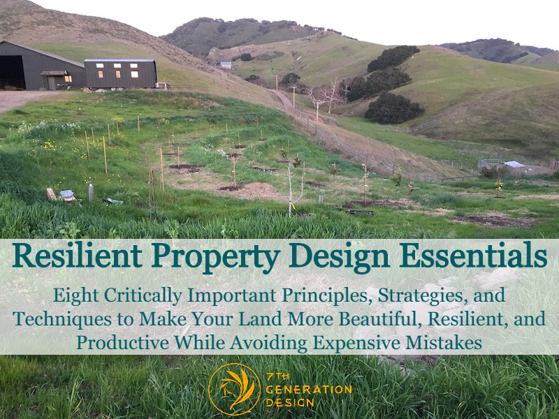 resilient property design essentials cover image